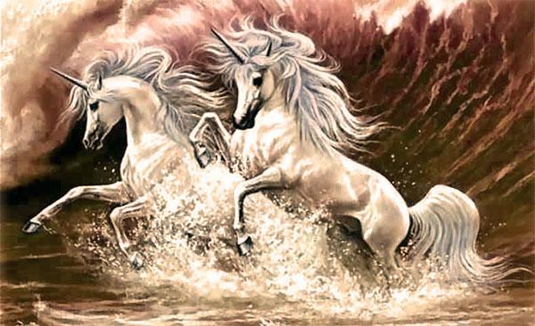 unicornios en el agua