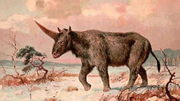 unicornio caminando en la edad media