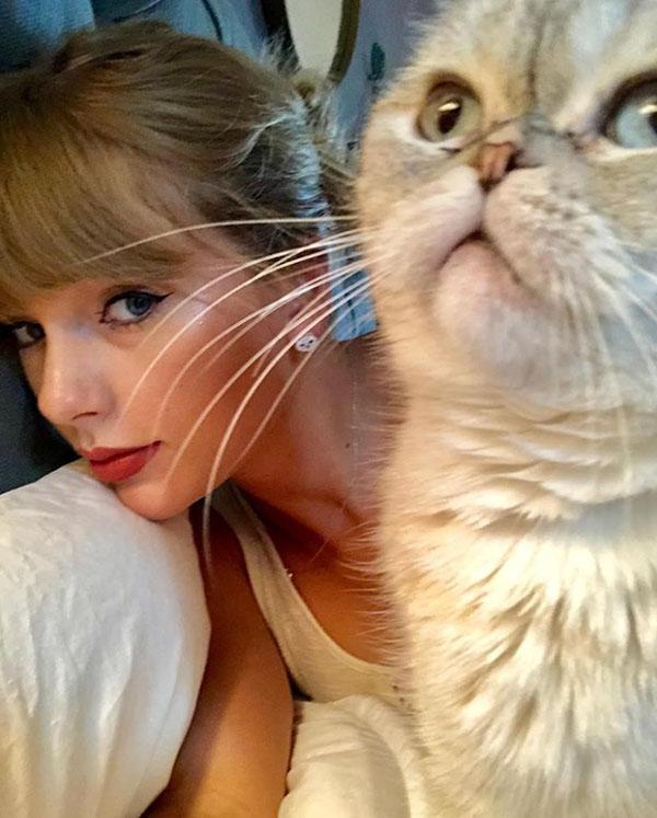 Taylor Swift con su gata Olivia