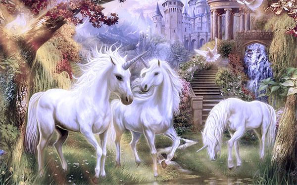 donde viven los unicornios reales