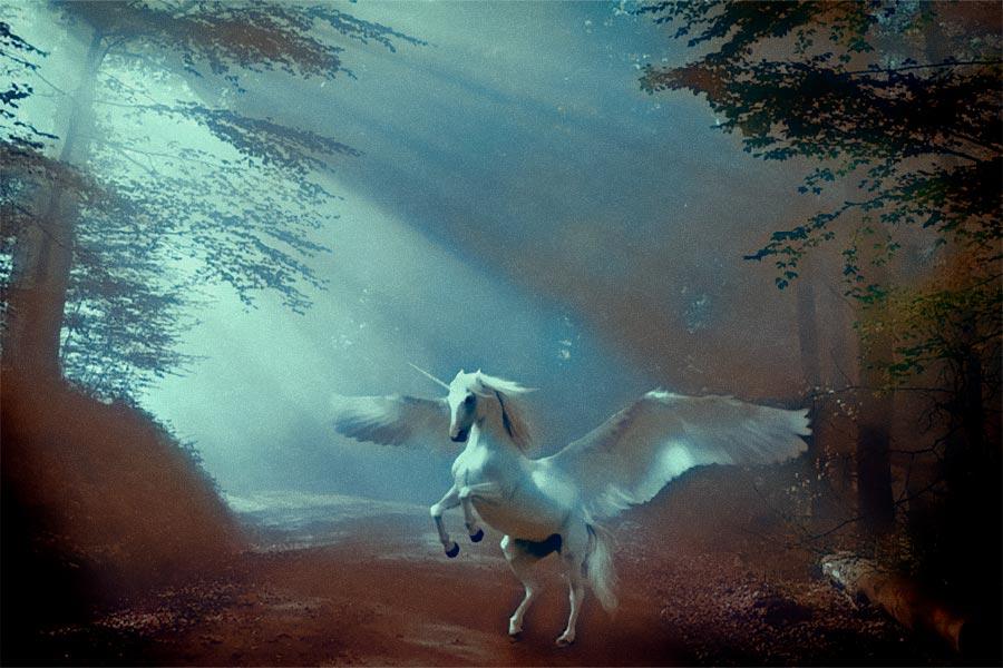 Porque están de moda los unicornios
