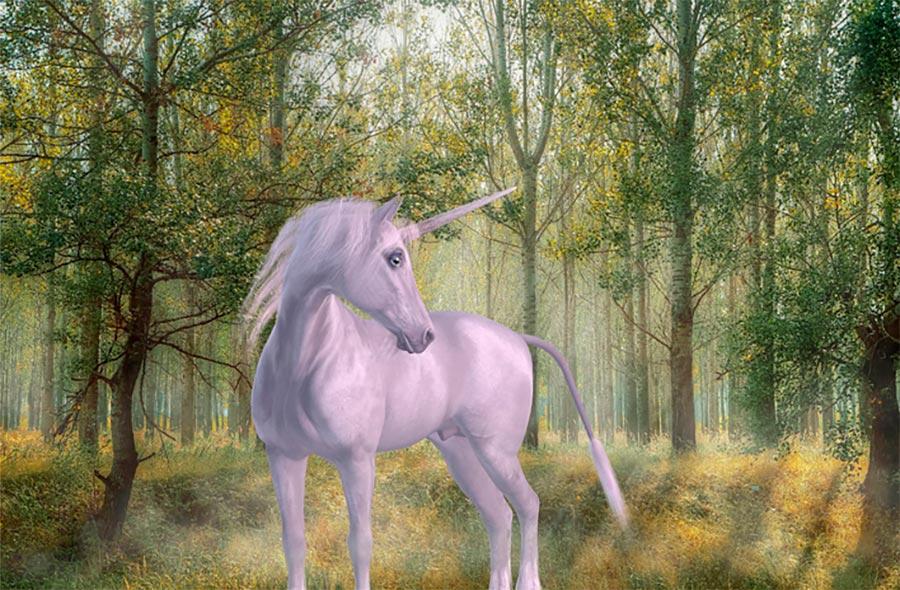 Qué significa el cuerno del unicornio